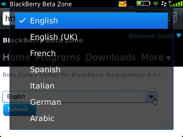 Twitter for BB 4.1.0.8 Choose Languages